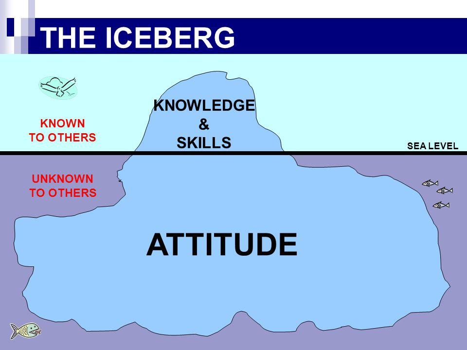 ATTITUDE THE ICEBERG KNOWLEDGE & SKILLS KNOWN TO OTHERS UNKNOWN