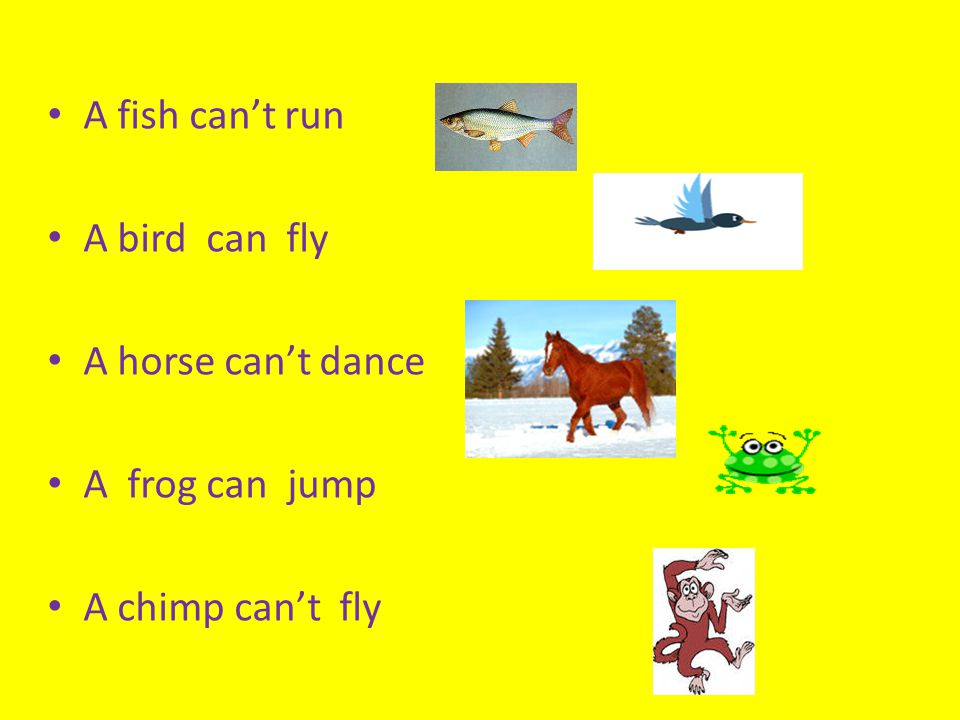 A fish can't run A bird can fly A horse can't dance A frog can jump A chimp can't fly