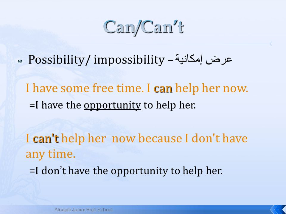 Can/Can't Possibility/ impossibility – عرض إمكانية