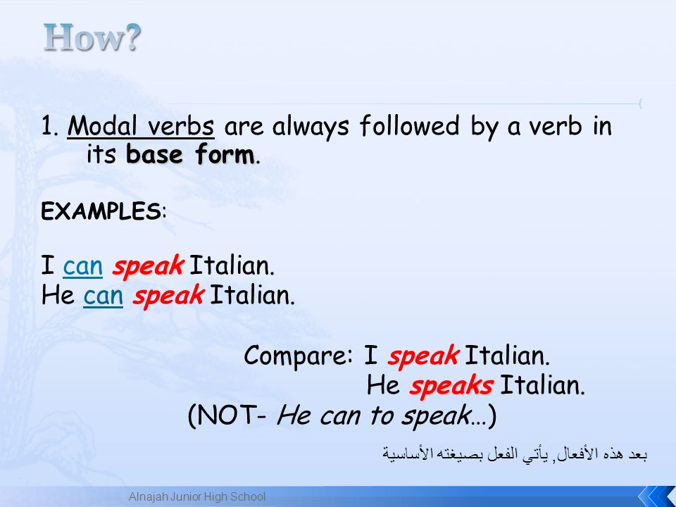 How 1. Modal verbs are always followed by a verb in its base form.