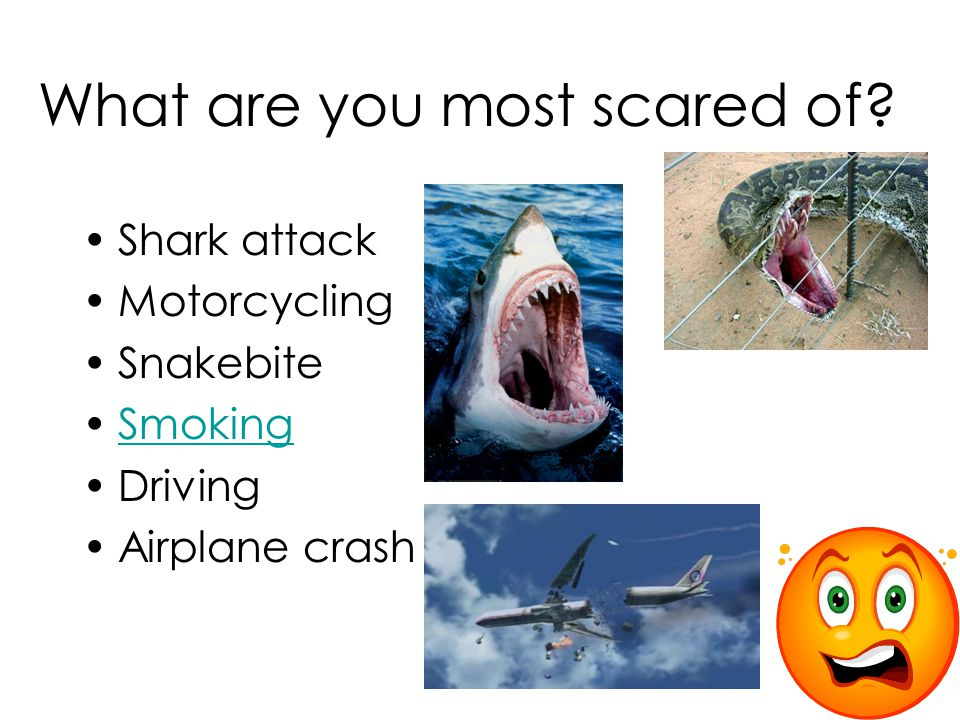 What are you most scared of