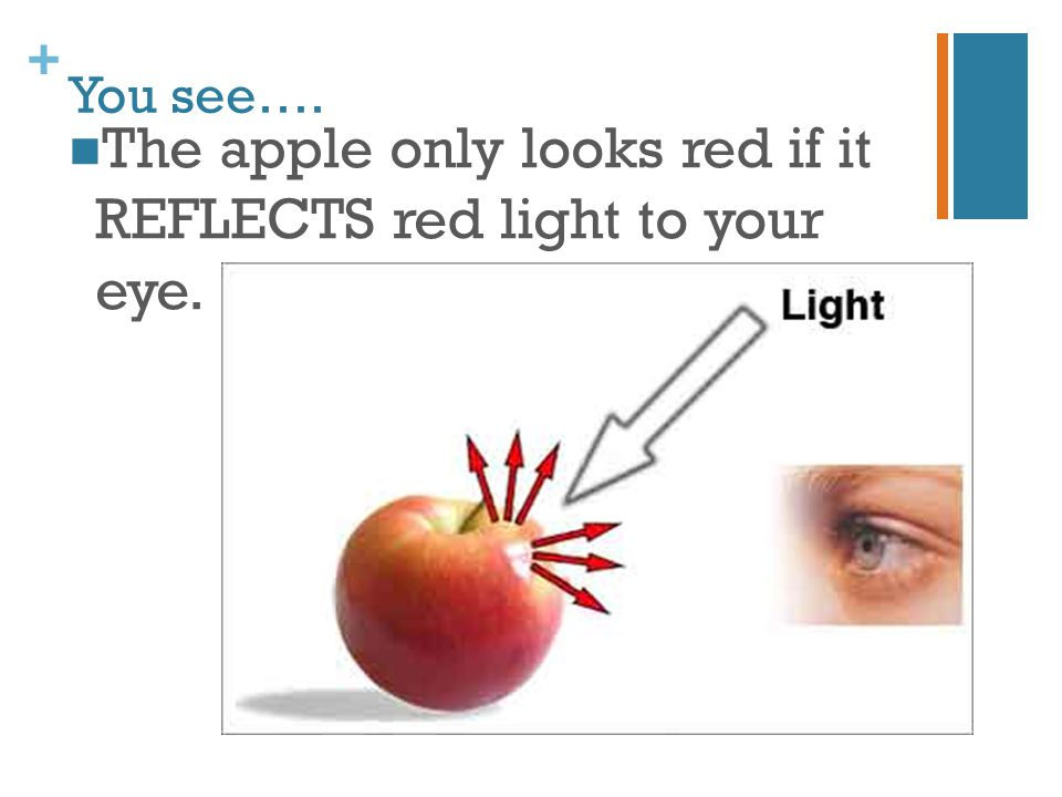 The apple only looks red if it REFLECTS red light to your eye.