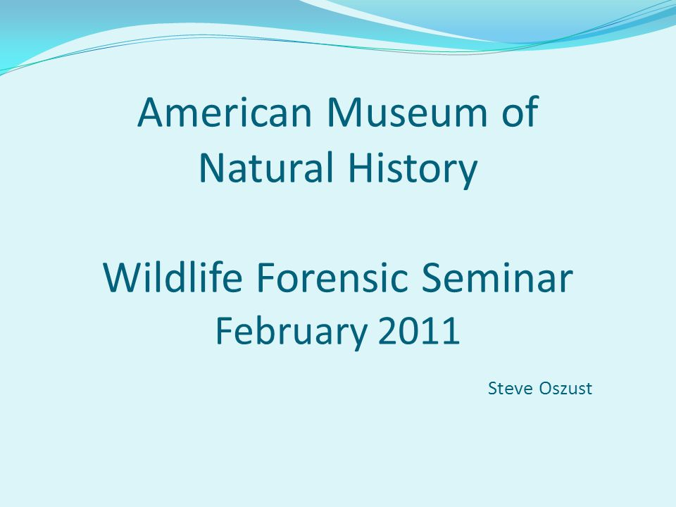 American Museum of Natural History Wildlife Forensic Seminar February 2011 Steve Oszust