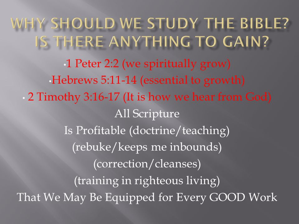 Why should we study the Bible Is there anything to gain