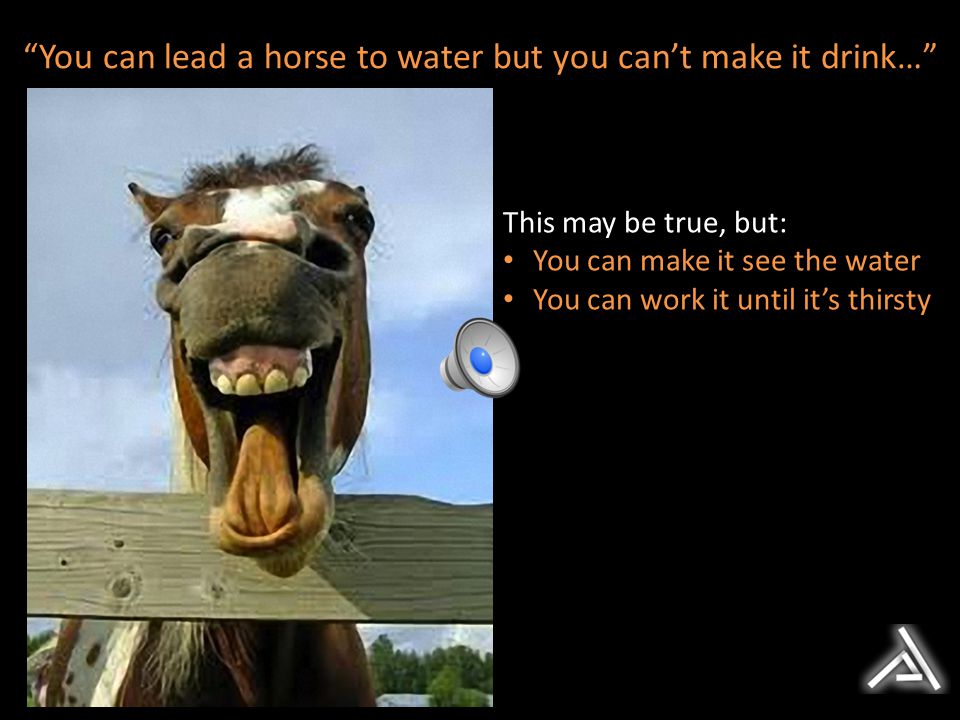 You can lead a horse to water but you can't make it drink…
