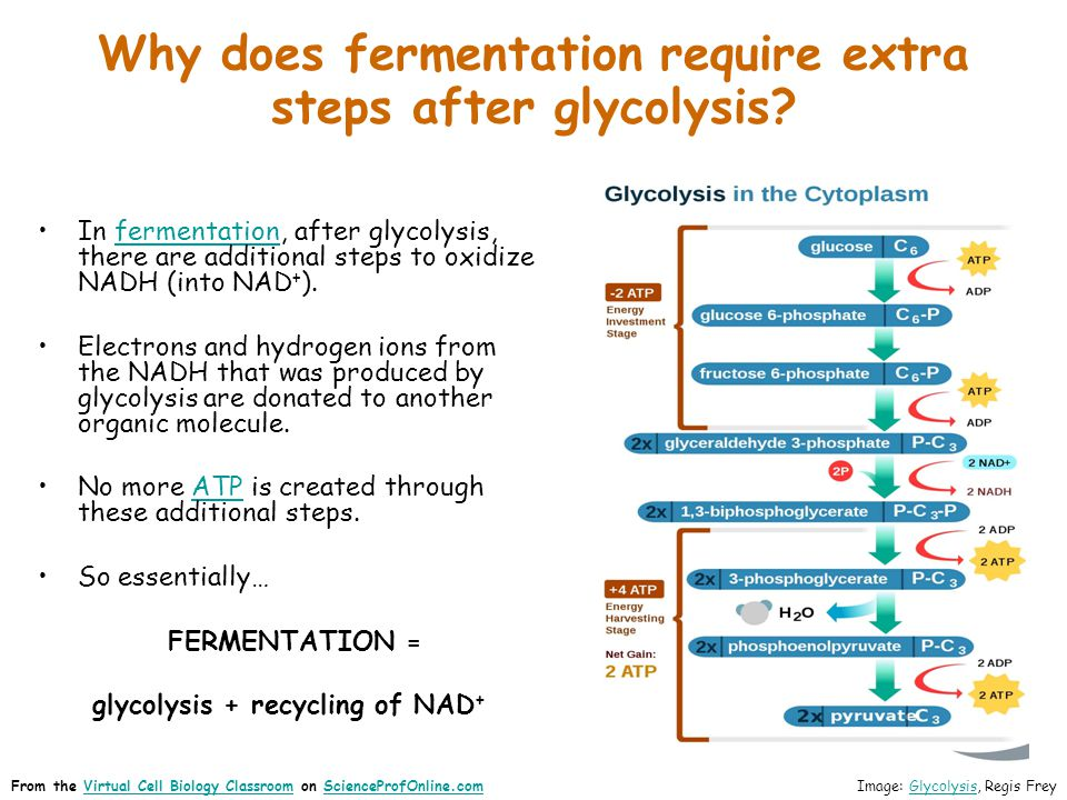 Why does fermentation require extra steps after glycolysis