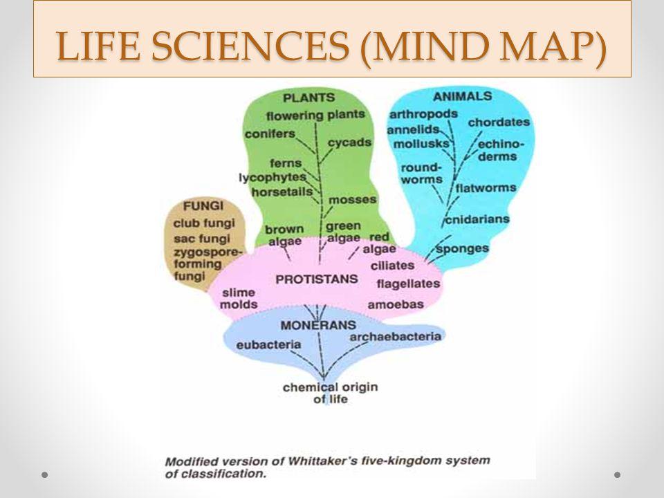 LIFE SCIENCES (MIND MAP)