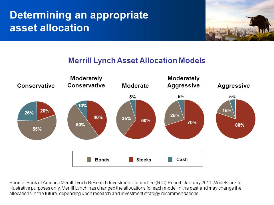 Determining an appropriate asset allocation