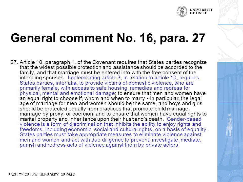 General comment No. 16, para. 27