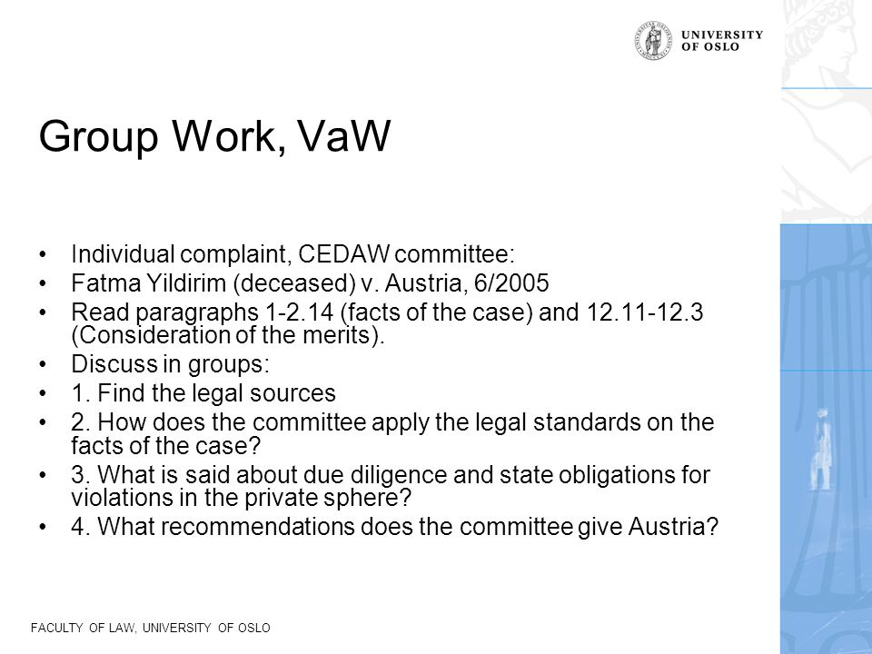 Group Work, VaW Individual complaint, CEDAW committee: