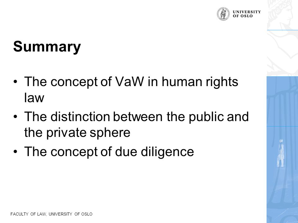 Summary The concept of VaW in human rights law