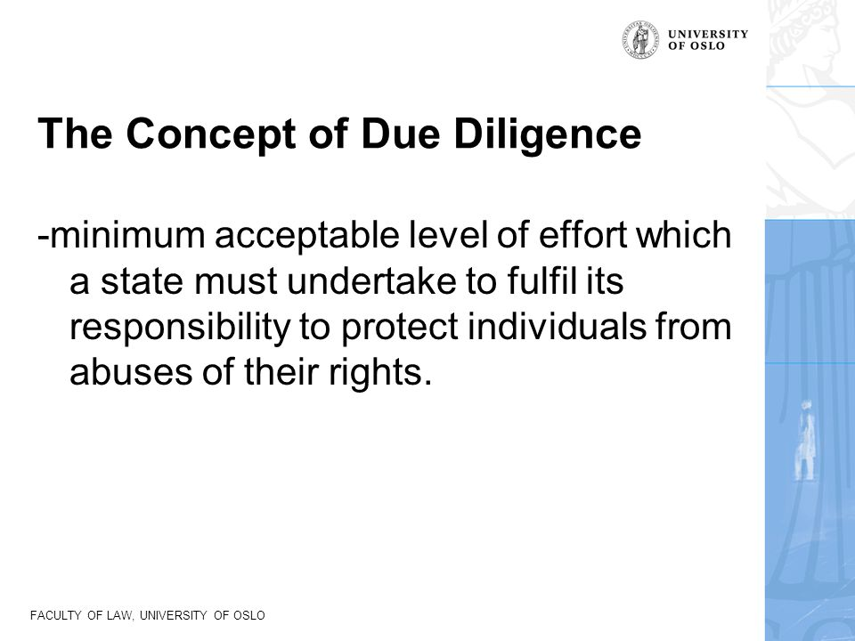 The Concept of Due Diligence
