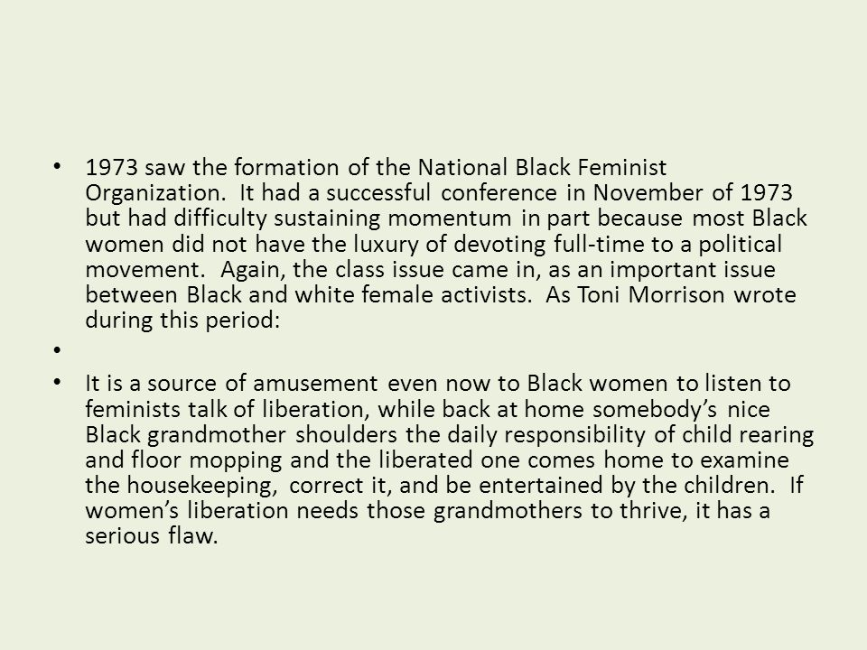 1973 saw the formation of the National Black Feminist Organization