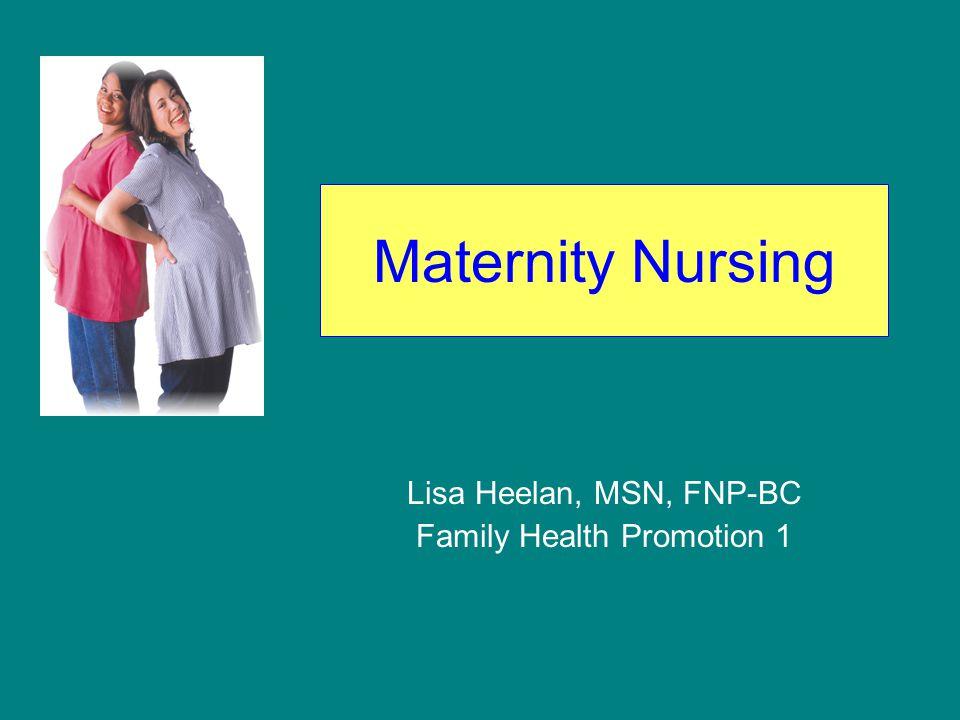 Lisa Heelan, MSN, FNP-BC Family Health Promotion 1