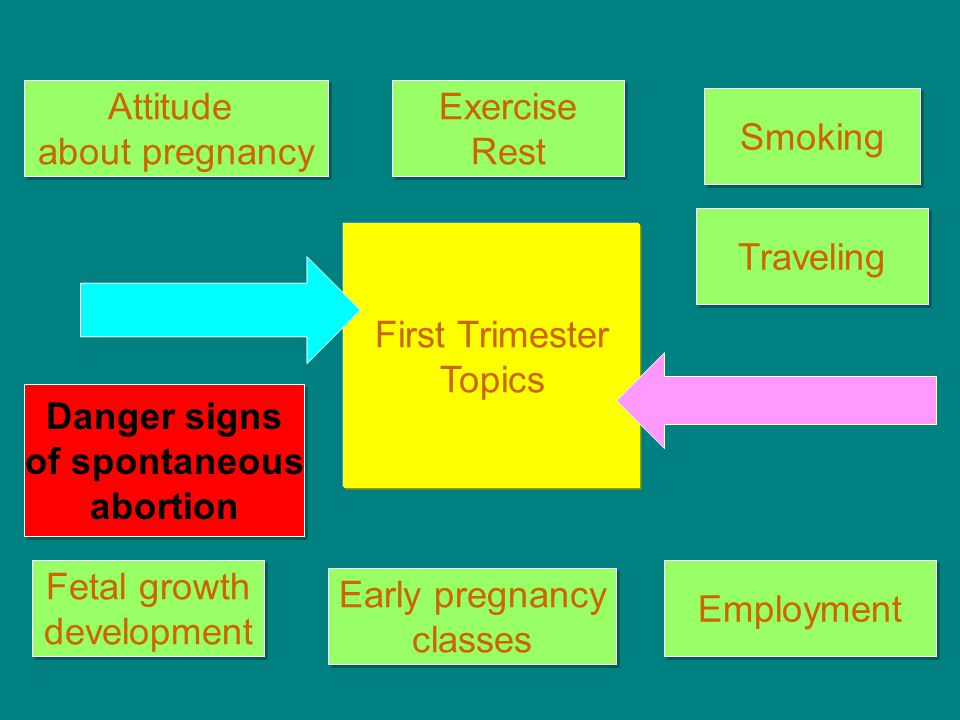 Attitude about pregnancy. Exercise. Rest. Smoking. Traveling. First Trimester. Topics. Danger signs.