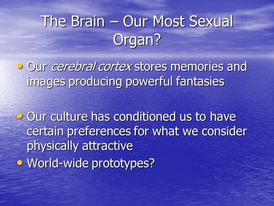 The Brain – Our Most Sexual Organ
