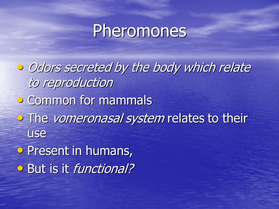 Pheromones Odors secreted by the body which relate to reproduction