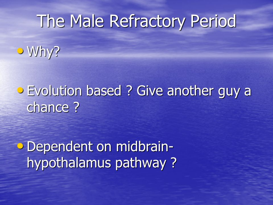 The Male Refractory Period