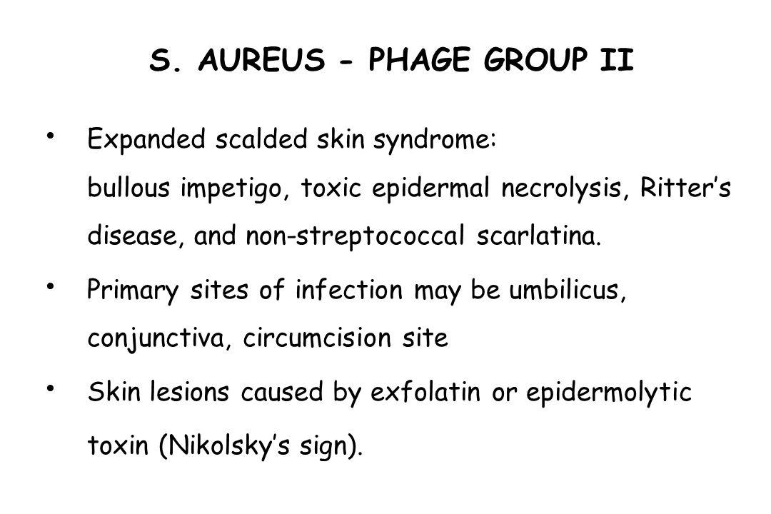 S. AUREUS - PHAGE GROUP II