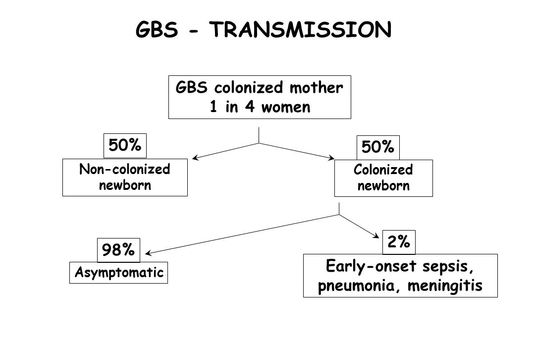 GBS - TRANSMISSION GBS colonized mother 1 in 4 women 50% 50% 2% 98%