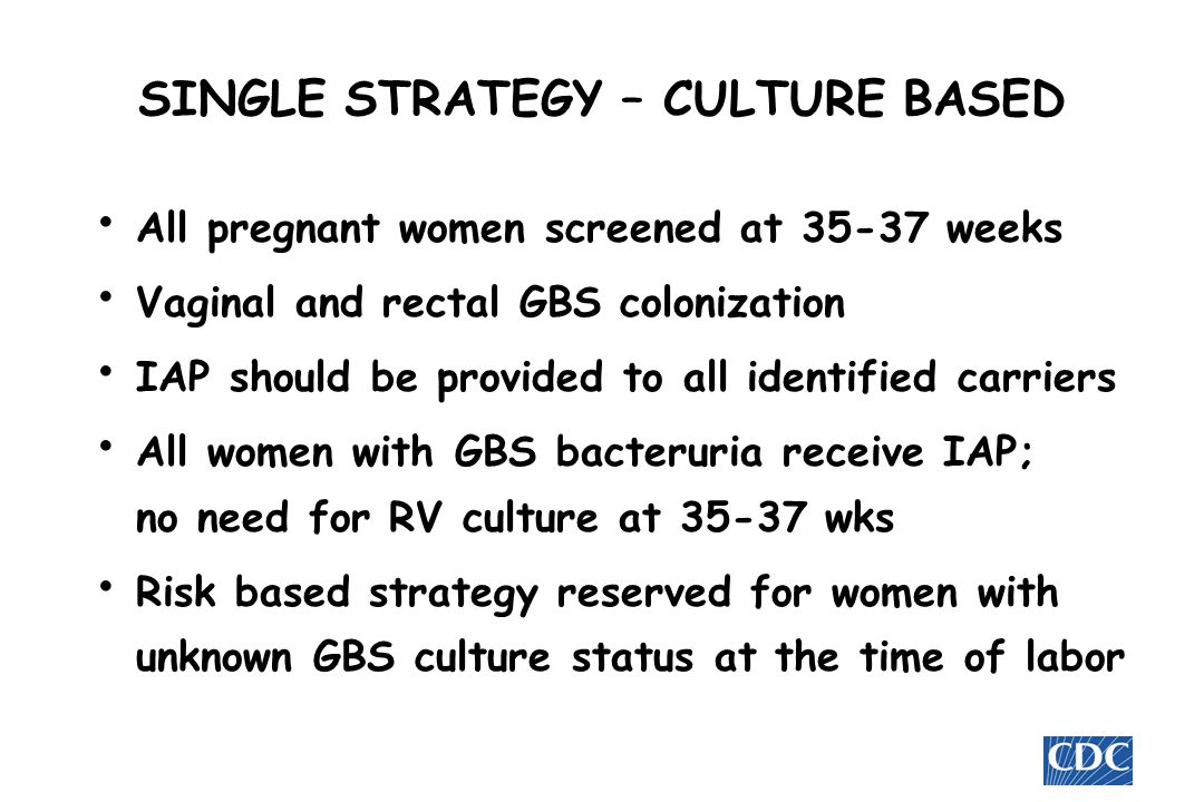 SINGLE STRATEGY – CULTURE BASED
