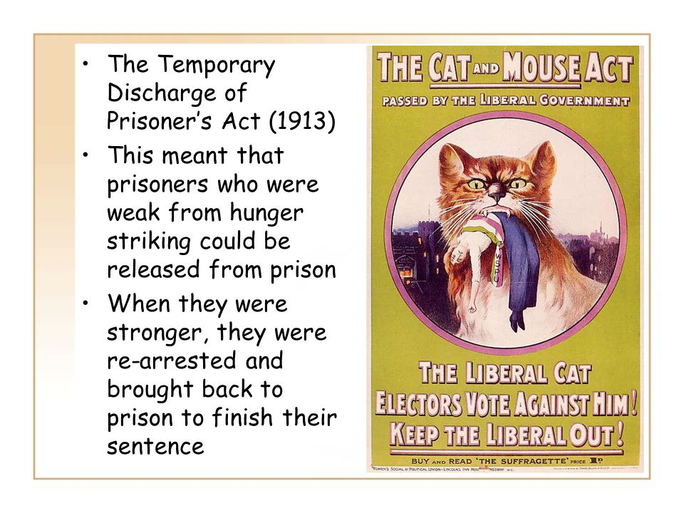 The Temporary Discharge of Prisoner's Act (1913)