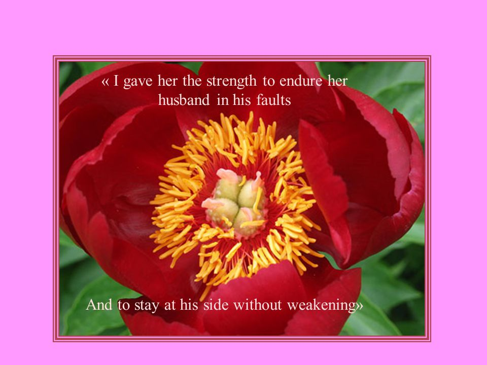 « I gave her the strength to endure her husband in his faults