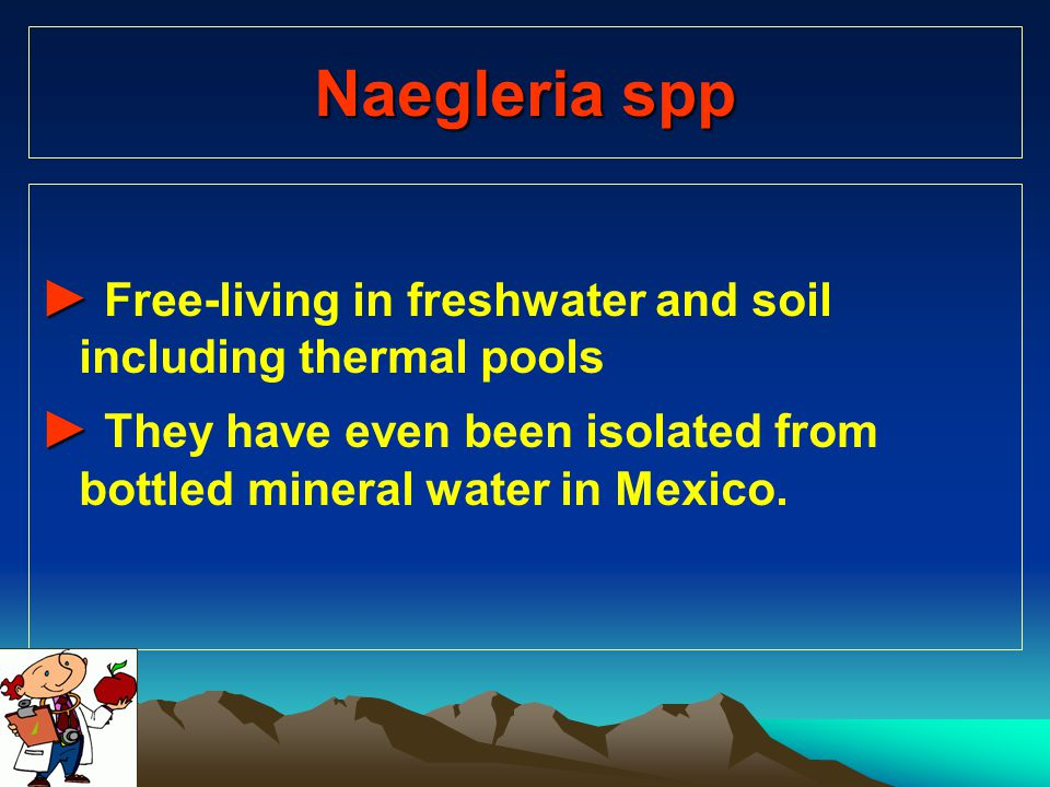 Naegleria spp ► Free-living in freshwater and soil including thermal pools.