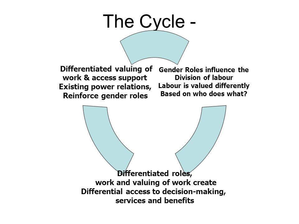 The Cycle -