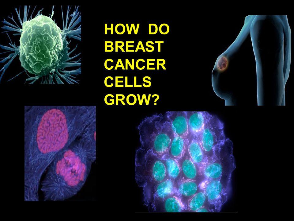 HOW DO BREAST CANCER CELLS GROW