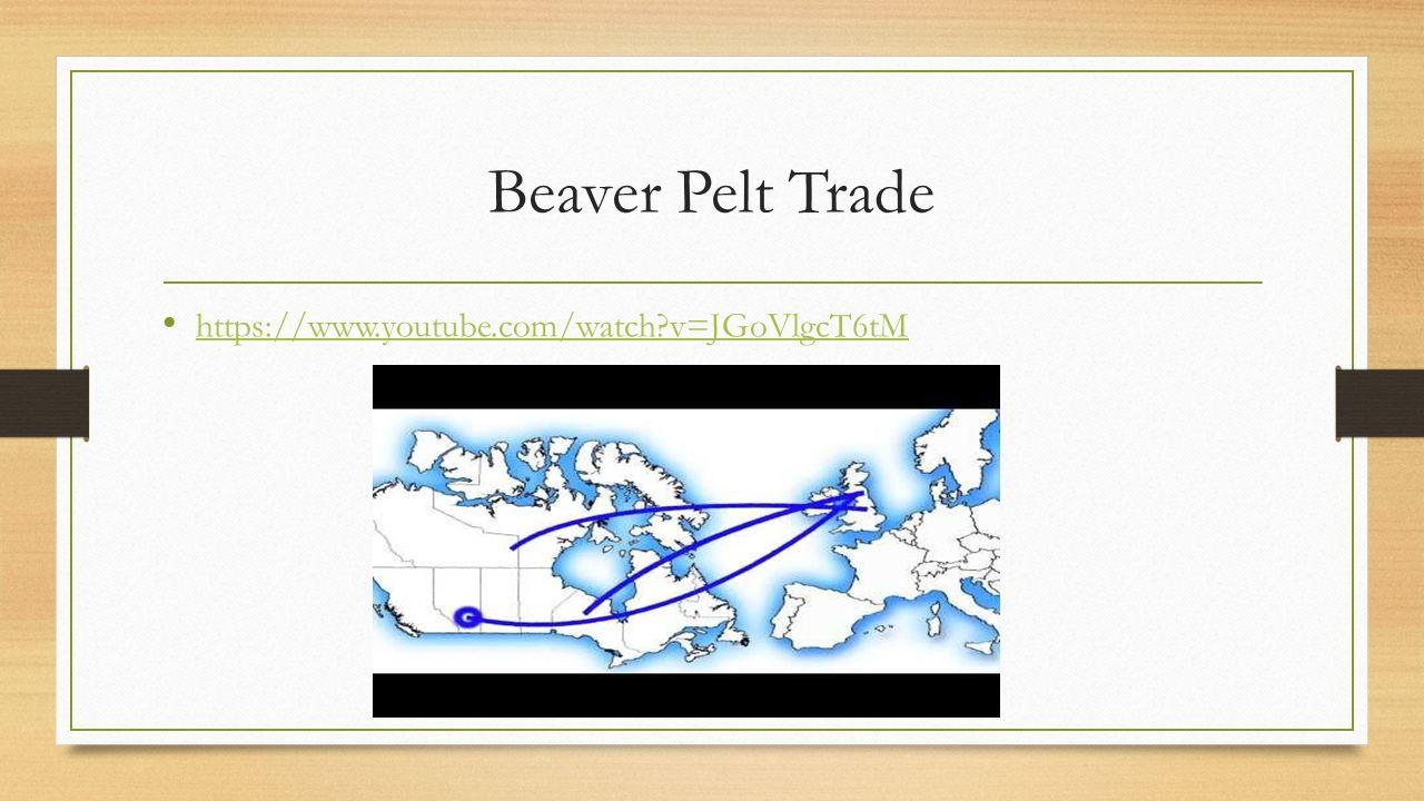 Beaver Pelt Trade https://www.youtube.com/watch v=JGoVlgcT6tM
