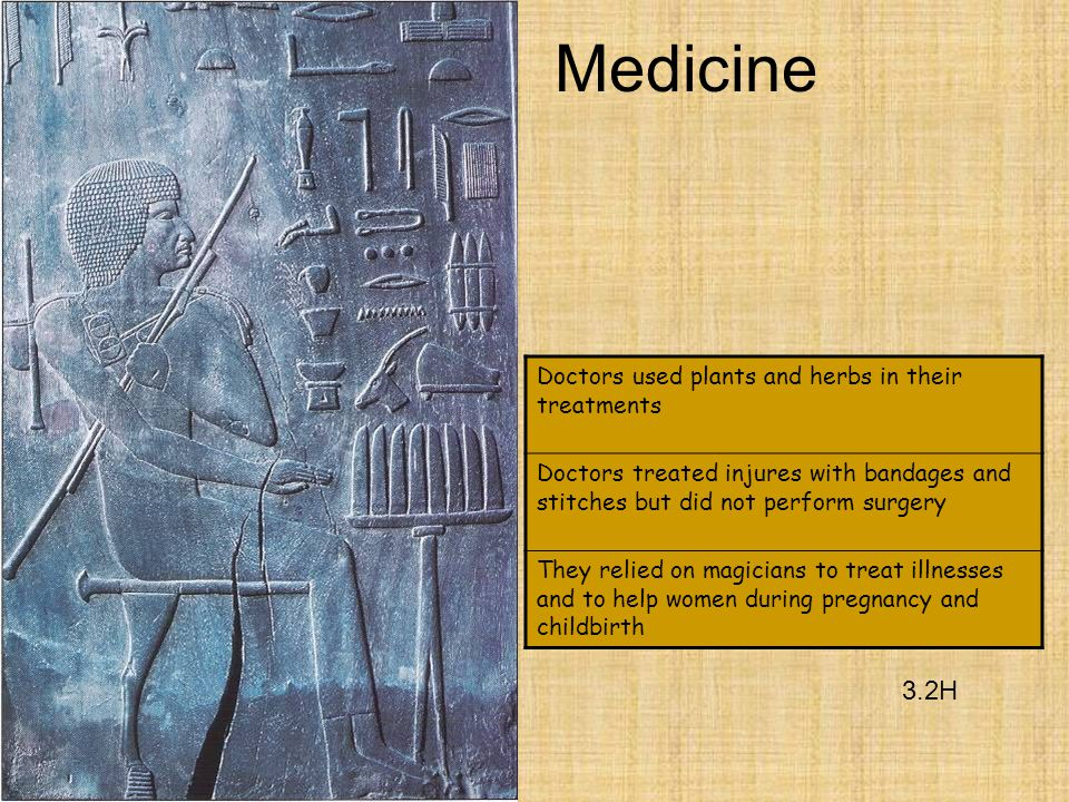 Medicine 3.2H Doctors used plants and herbs in their treatments