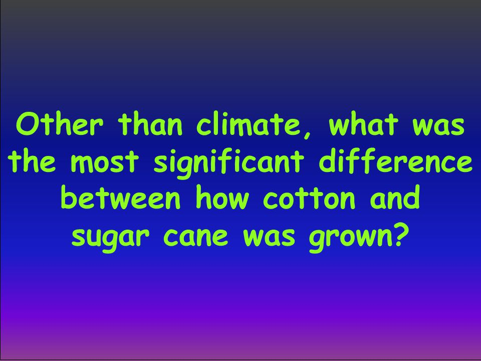 Other than climate, what was the most significant difference between how cotton and sugar cane was grown