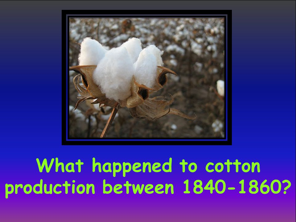 What happened to cotton production between 1840-1860