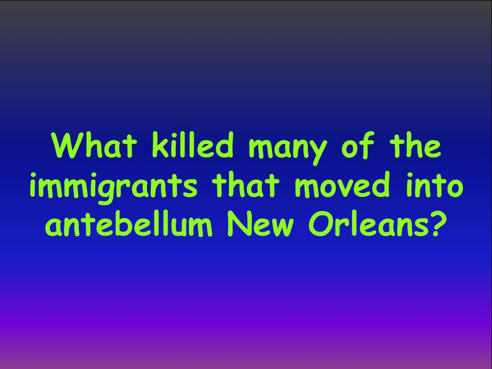 What killed many of the immigrants that moved into antebellum New Orleans