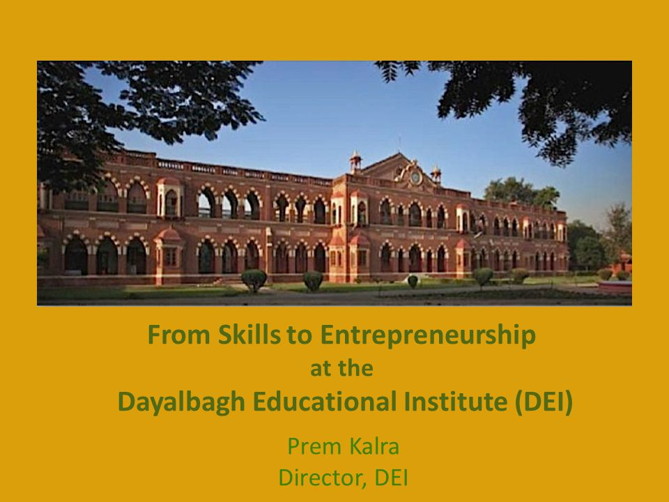 From Skills to Entrepreneurship at the Dayalbagh Educational Institute (DEI)
