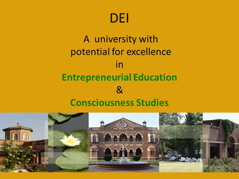 Entrepreneurial Education Consciousness Studies