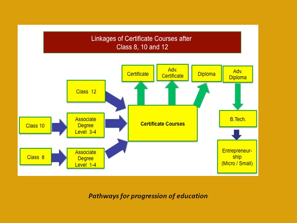 Pathways for progression of education