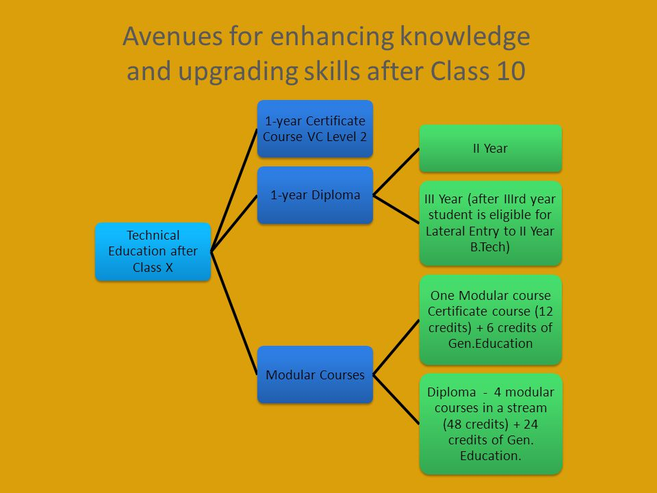 Avenues for enhancing knowledge and upgrading skills after Class 10