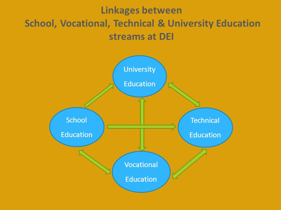 School, Vocational, Technical & University Education streams at DEI