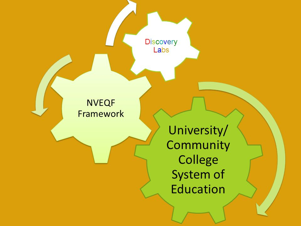 University/ Community College System of Education