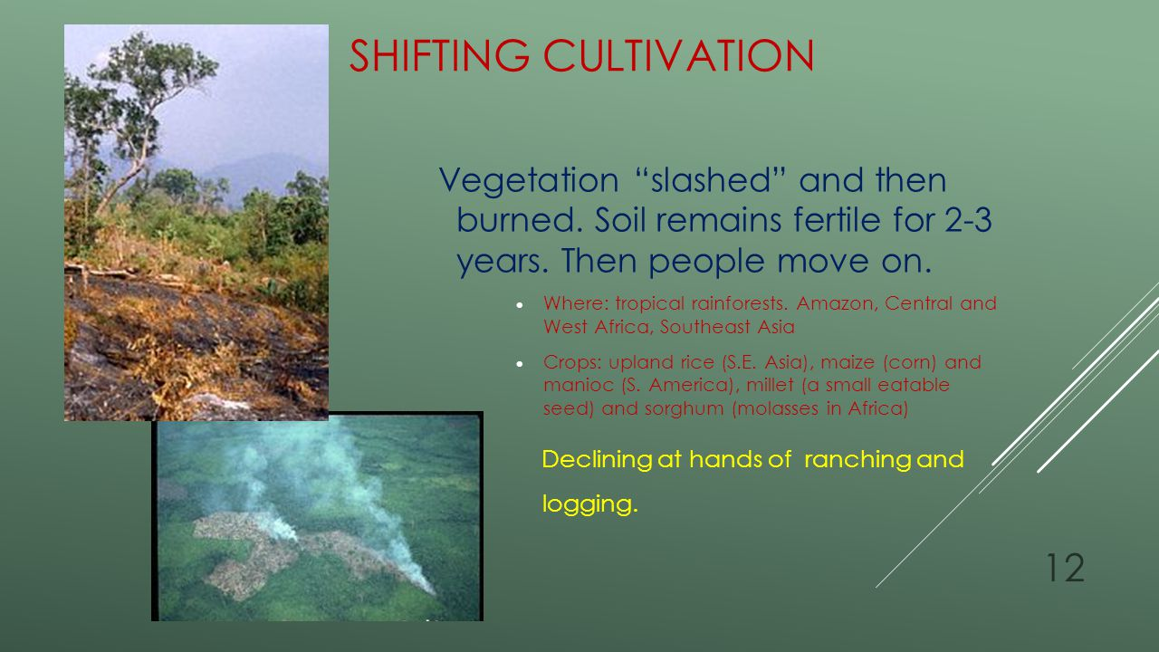 Shifting Cultivation Vegetation slashed and then burned. Soil remains fertile for 2-3 years. Then people move on.