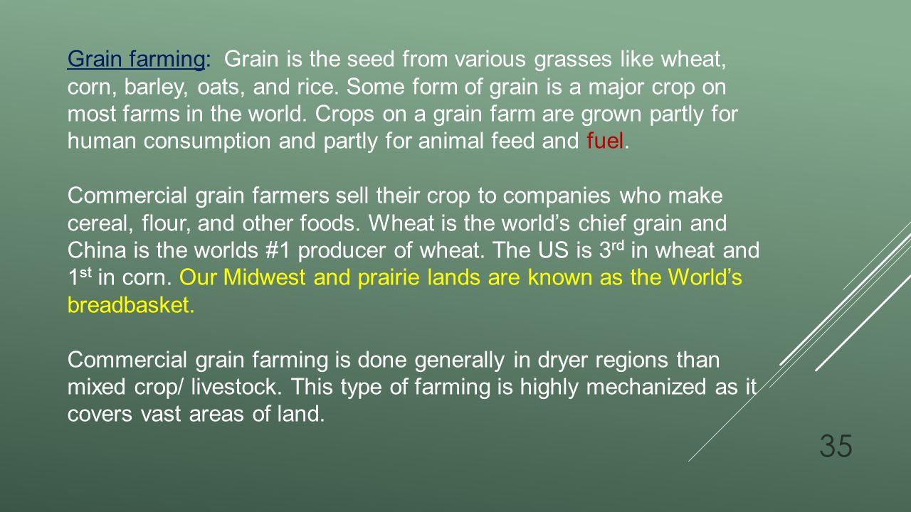 Grain farming: Grain is the seed from various grasses like wheat, corn, barley, oats, and rice. Some form of grain is a major crop on most farms in the world. Crops on a grain farm are grown partly for human consumption and partly for animal feed and fuel.