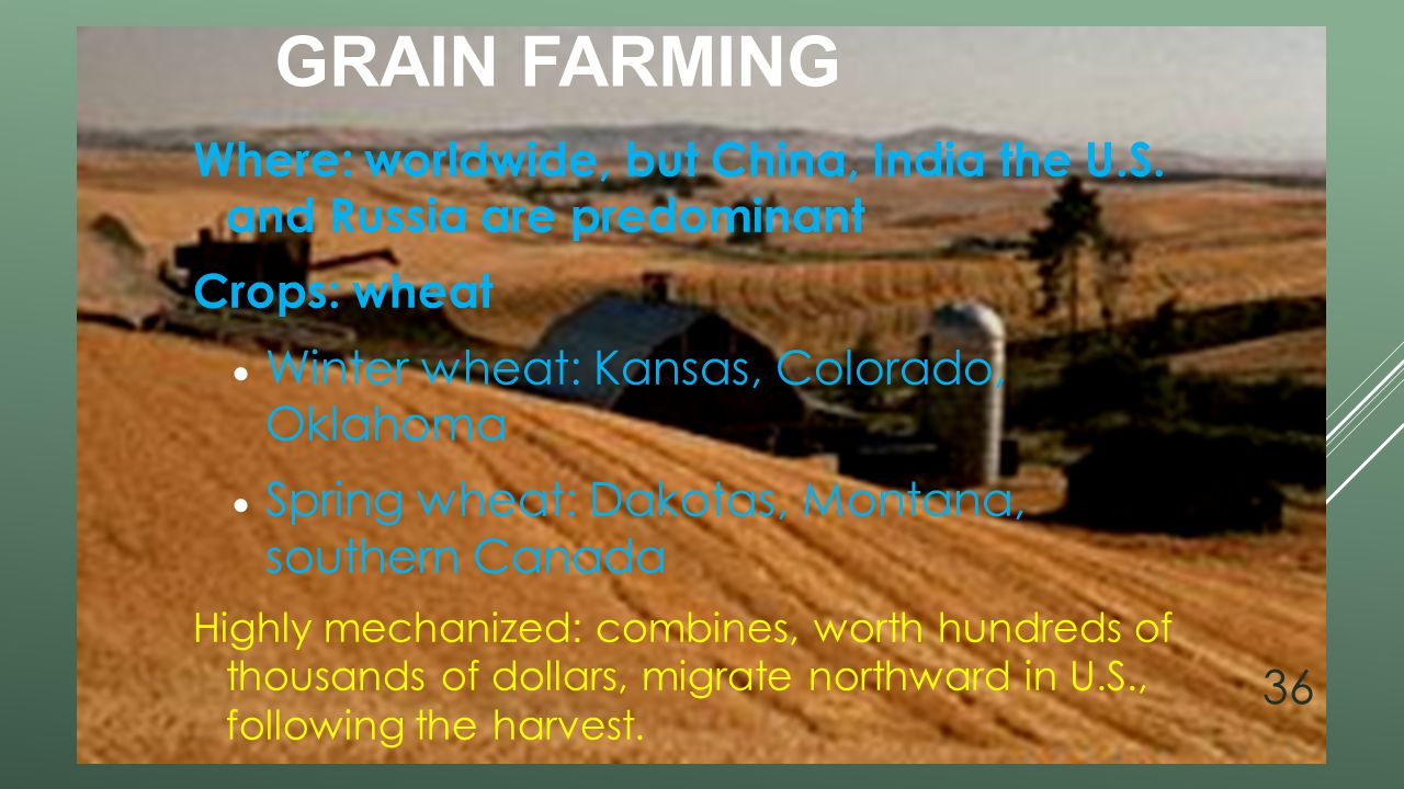 Grain Farming Where: worldwide, but China, India the U.S. and Russia are predominant. Crops: wheat.