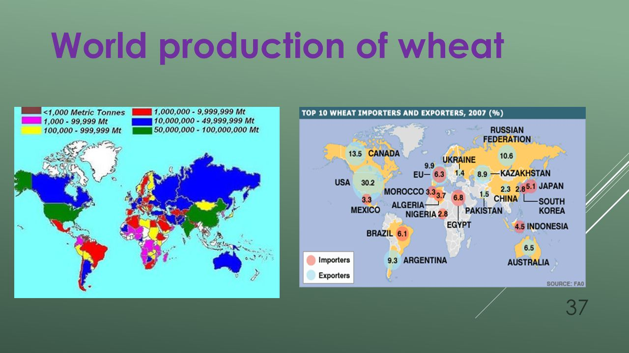 World production of wheat