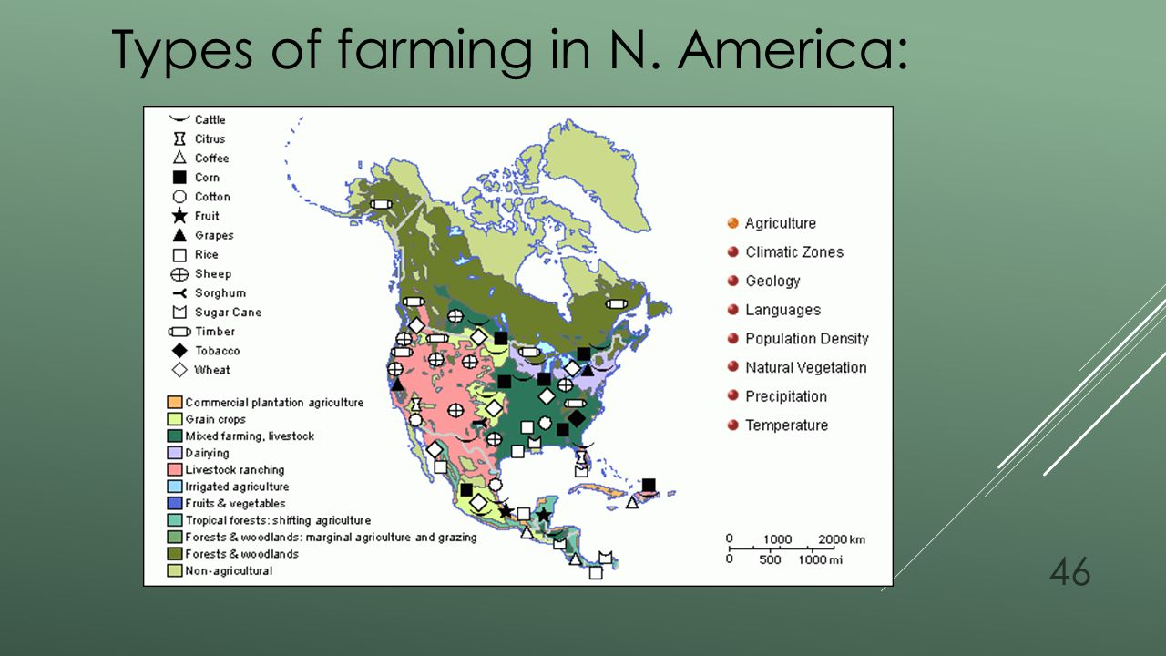 Types of farming in N. America:
