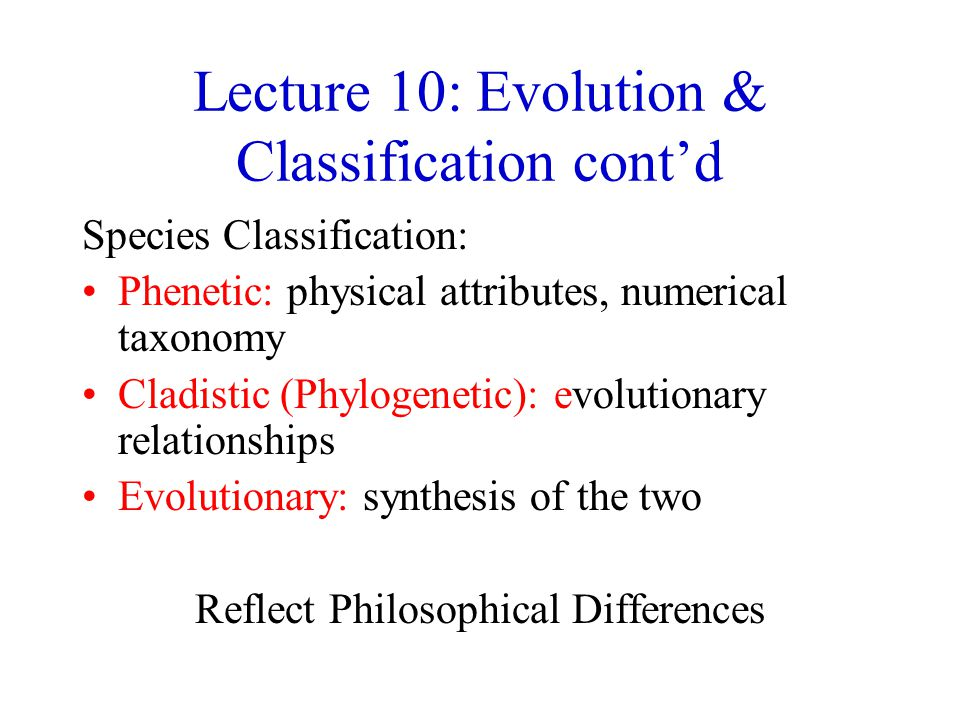 Lecture 10: Evolution & Classification cont'd