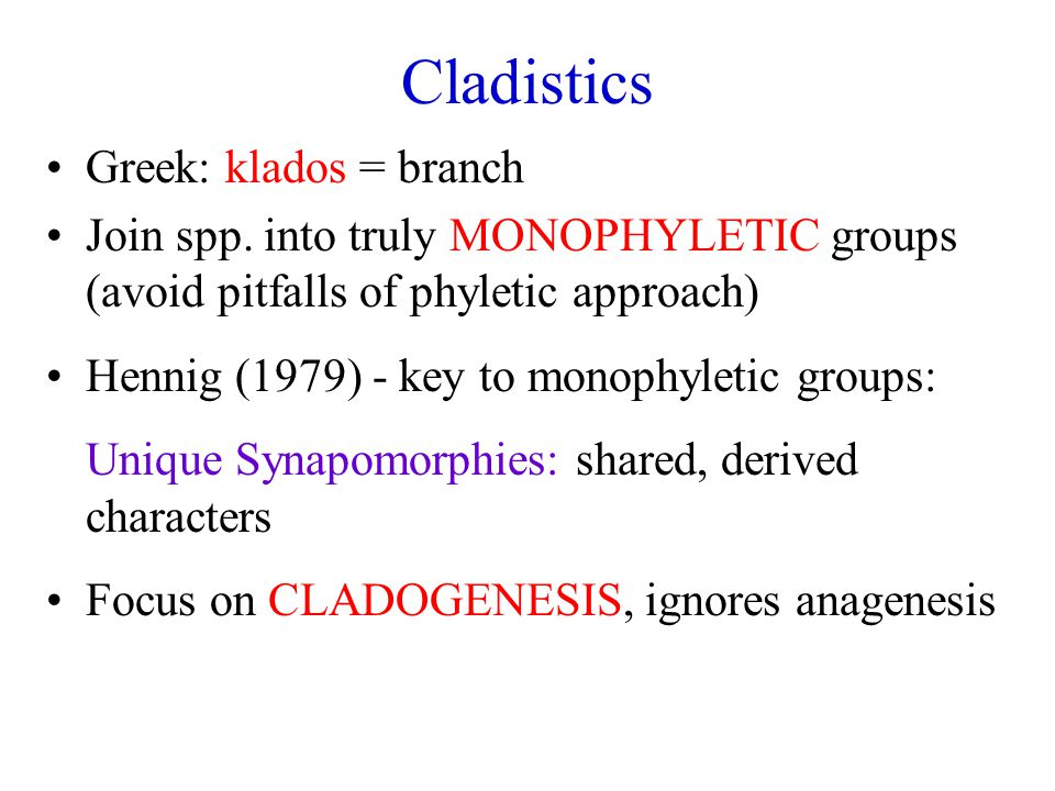 Cladistics Greek: klados = branch