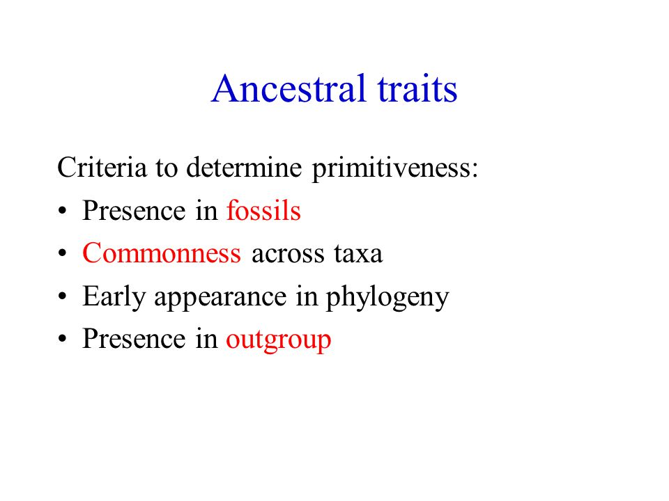 Ancestral traits Criteria to determine primitiveness: