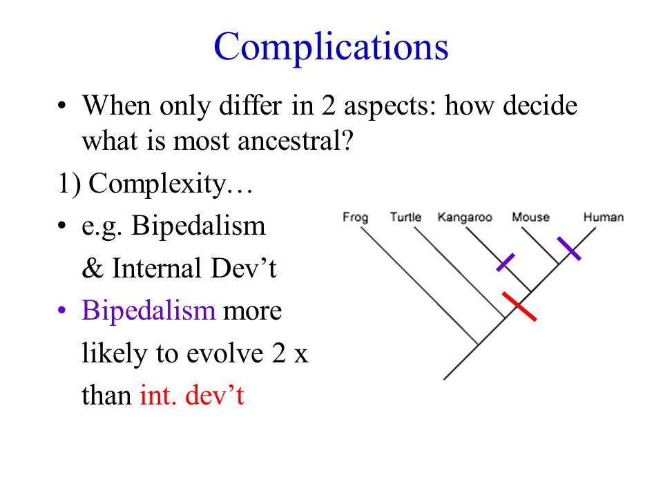 Complications When only differ in 2 aspects: how decide what is most ancestral 1) Complexity… e.g. Bipedalism.
